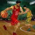 篮球3d模拟安卓版 V1.0.1
